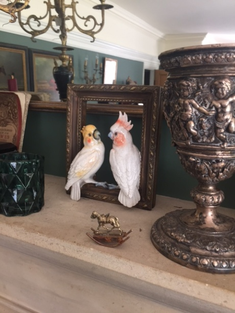 cockatiel & parrot in gold frame